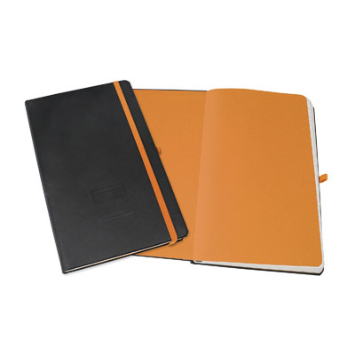 EVOLVE-SPECTRA NOTEBOOKS
